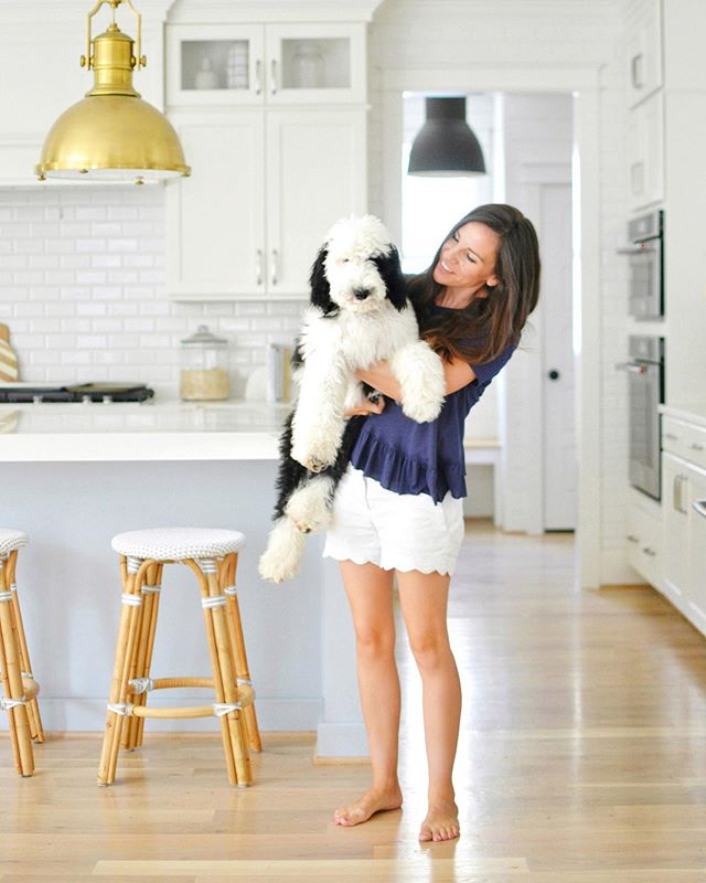 "Me: ""We're never getting a dog again!""⁣ Also me: 👆🏼⁣ ⁣ ⁣ ⁣ ⁣ ⁣ ⁣ ⁣ #sheepdog #sheepadoodle #sheepadoodlesofinstagram #sheepadoodlepuppy #sheepies #doodledog #puppies🐶 #kitchengoals #kitchennook #coastalfarmhouse #homesohard #homeenvy #coastalkitchen #mybhg #smpliving  #sodomino  #prettylittleinteriors #howihaven #littleaccountlove #thepursuitofjoy #coastalinteriors  #thenewsouthern  #currenthomeview #serenaandlily #homeblogger #hgtvhome #homewithrue #myoklstyle ⁣"