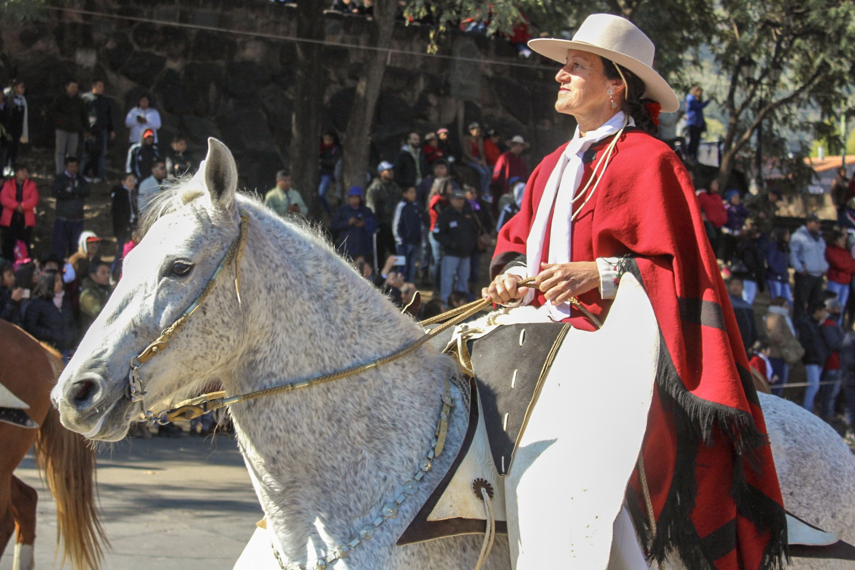 A gaucha in the procession