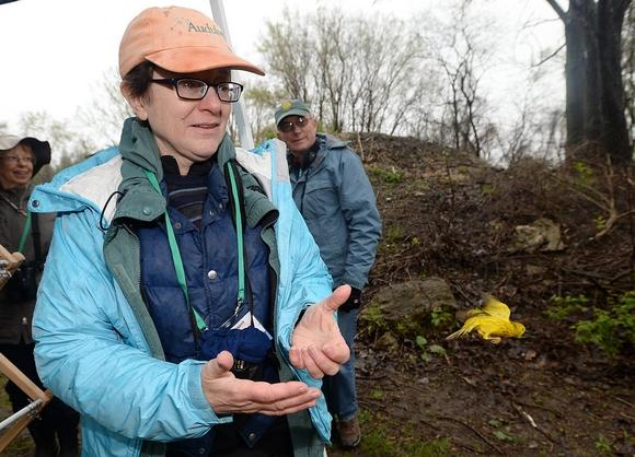 - Sarah Sargent, PhD, is the Executive Director of the Erie Bird Observatory. She has more than thirty years experience working with birds and for the past ten years, she has overseen various avian research projects throughout Northwestern Pennsylvania.