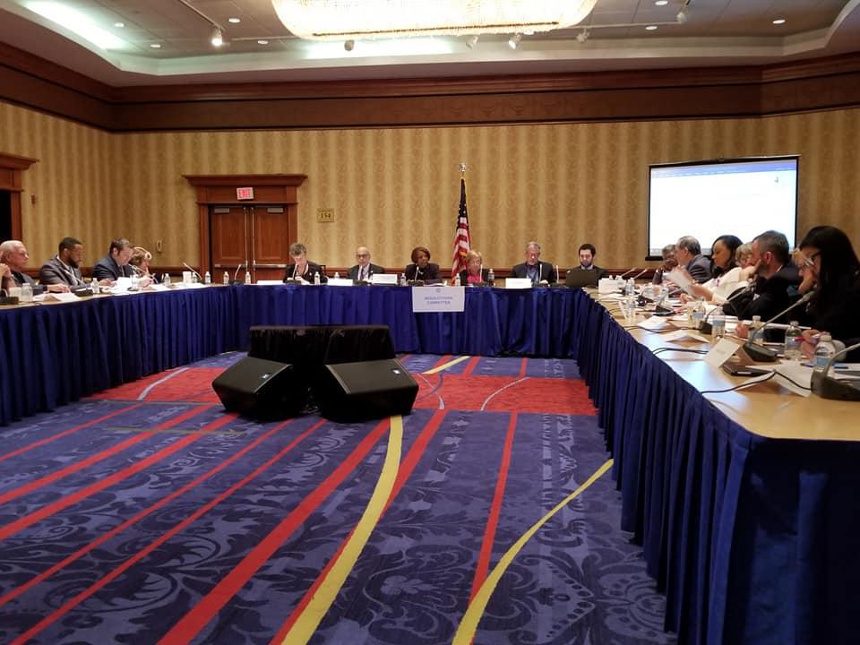 DNC Resolutions 1, 21 Apr 18.jpg