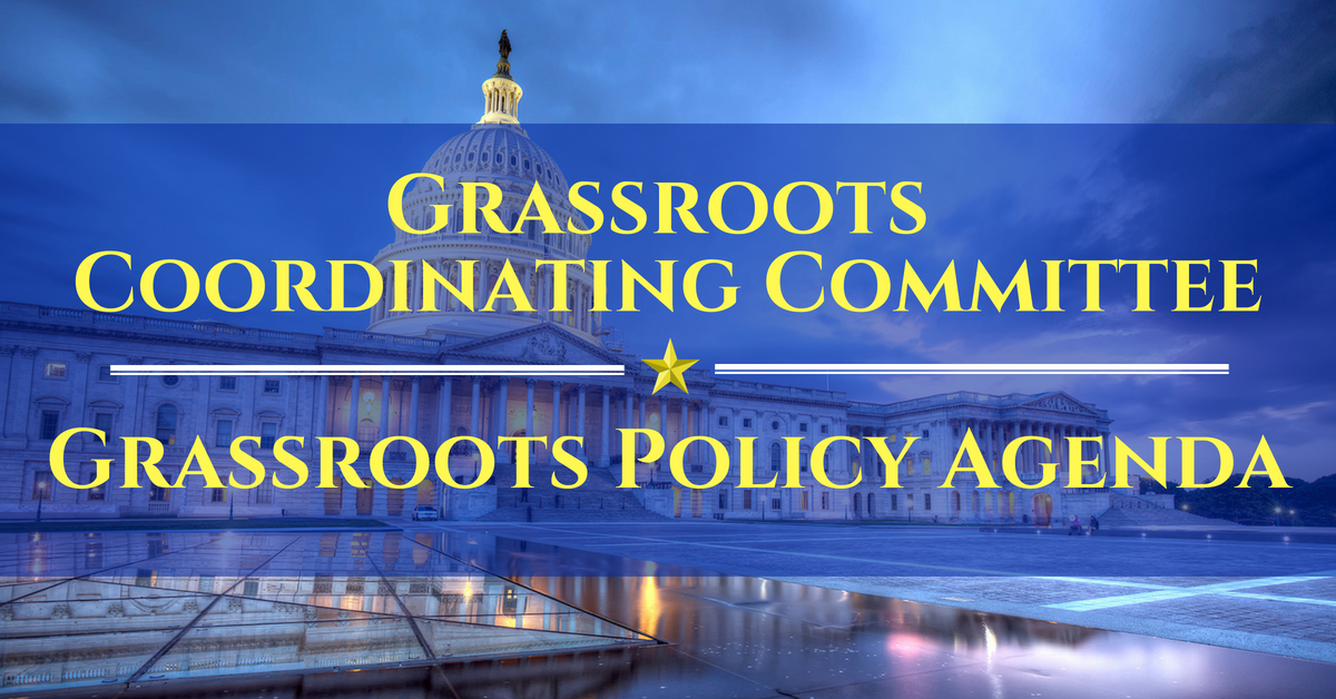 Grassroots Policy Agenda Logo, 20 Jun 18.png