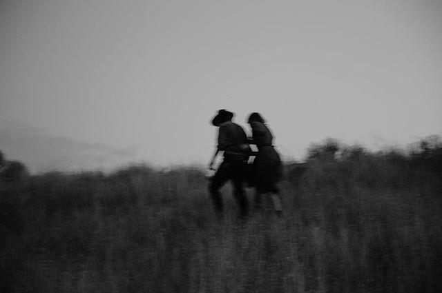 Hazey lovers.