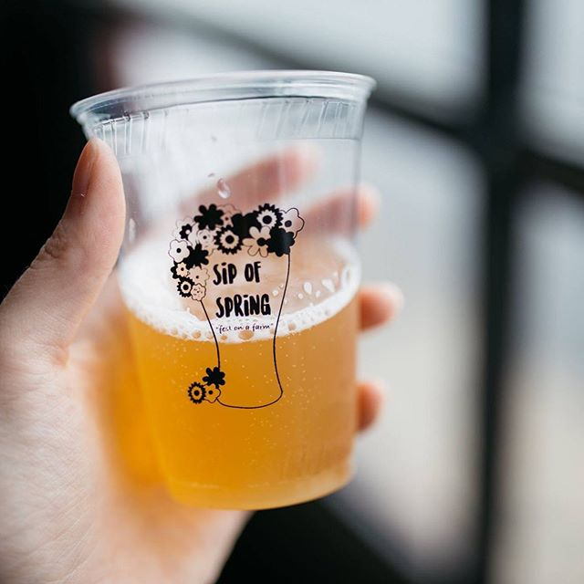 #SipofSpring festival will showcase 13 small Oregon craft breweries, each pouring two beers apiece, plus one Oregon cidery. Attendees can taste spring sippers from @breaksidebrews, @cruxfermentationproject , @culminationbrewing , @gatewaybrewingpdx, @giganticbrewing, @eclipticbrewing , @levelbeer, @littlebeastbrewing, @migrationbrewing , @montavillabrewworks , @pfriembeer @stormbreakerbrewing, @uprightbrewing and @baumanscider. A complete list is available at SipofSpring.com.