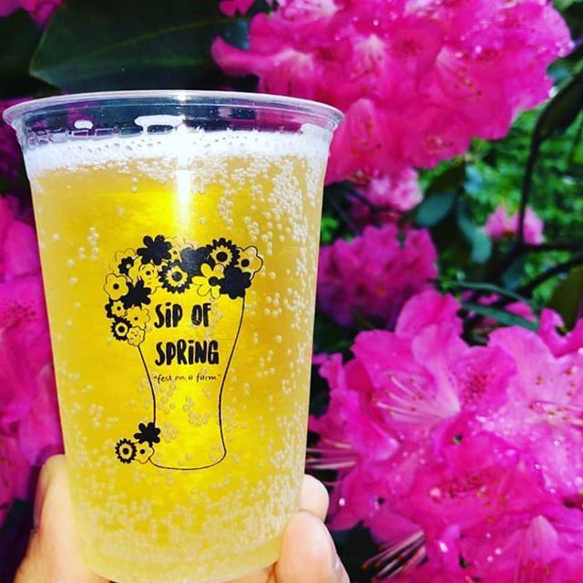 Tomorrow 11-9! At the Sip of Spring you can also sip cider from @baumanscider. They created two amazing options: English Huckleberry and StrawPerry. Check out the rest of what's pouring at sipofspring.com.
