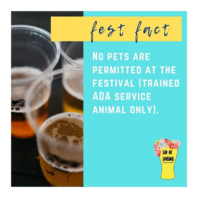Sip of Spring is happening TODAY May 18th 11-9! Here are some friendly fest facts before you go! Any questions? Shoot us a message! #sipofspring