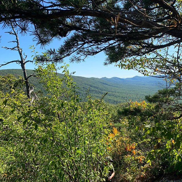 Views like this are worth every step of the 10 mile trail to Halfmoon Mountain