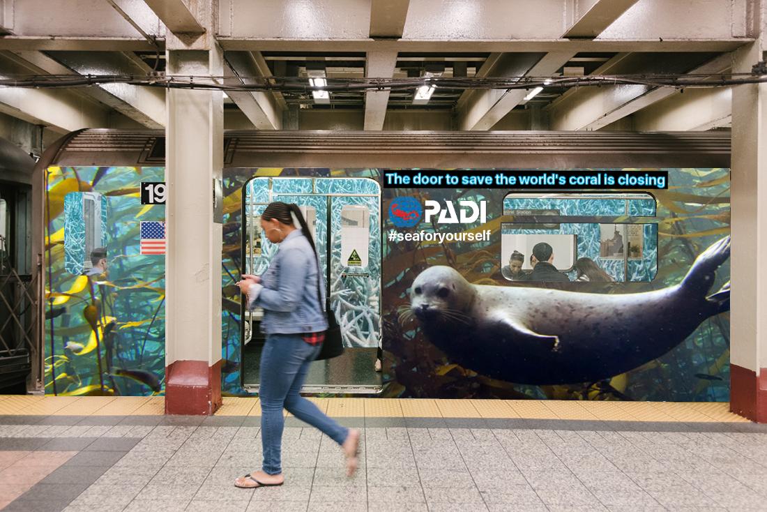 PADI subwaybleachedinside3.jpeg