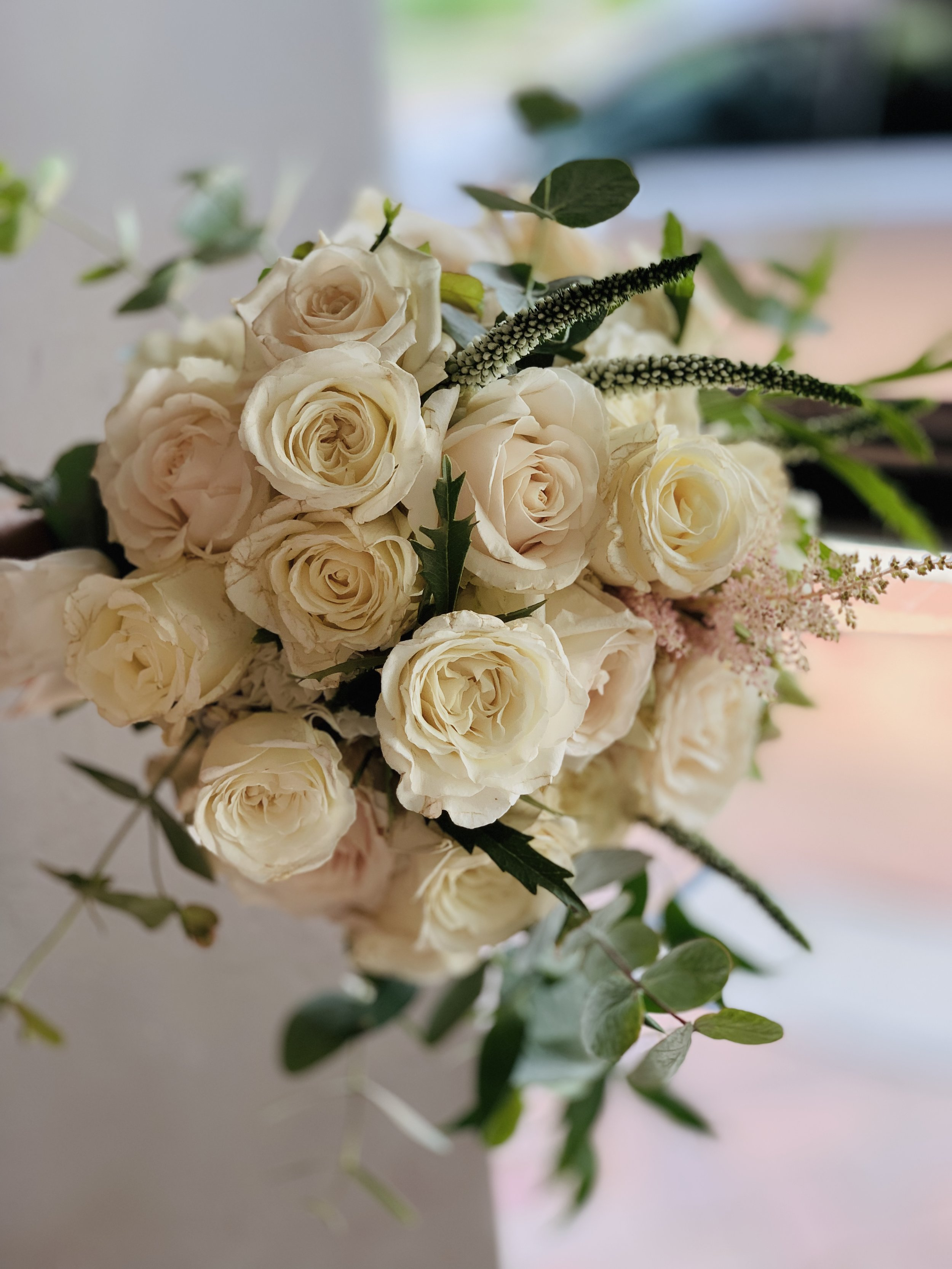 Stunning white and green bridal bouquet using soft gum foliage to form the edges.