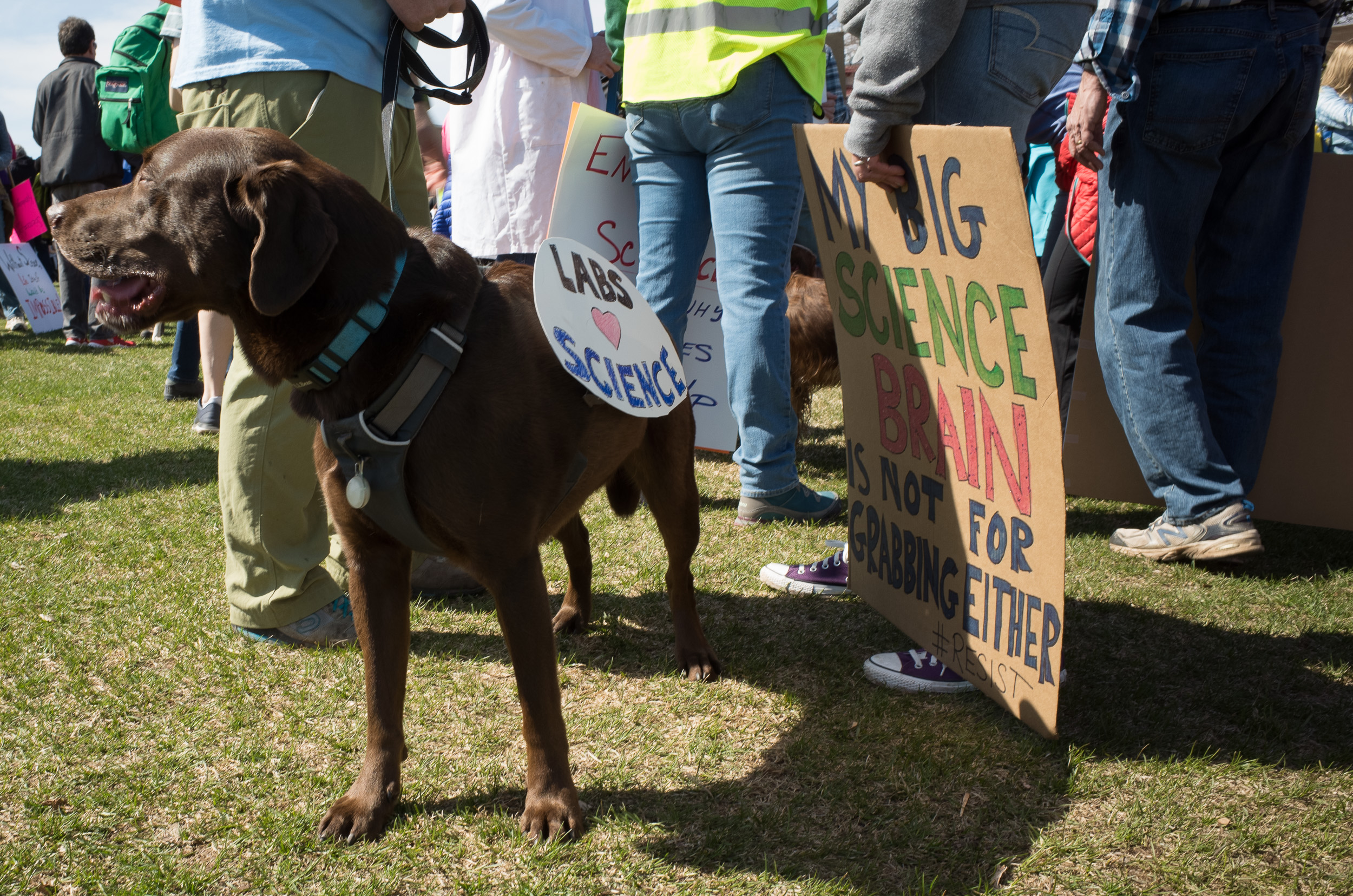 march for science 4-2017-0009719.jpg