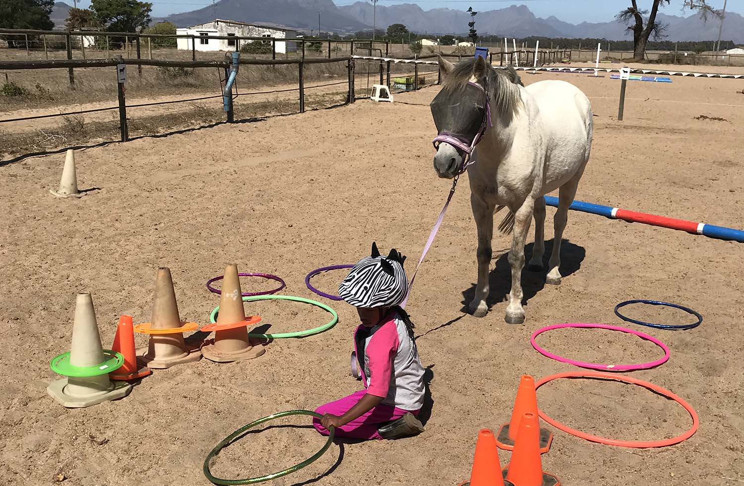 equine-assisted-learning-services-equitots.jpg