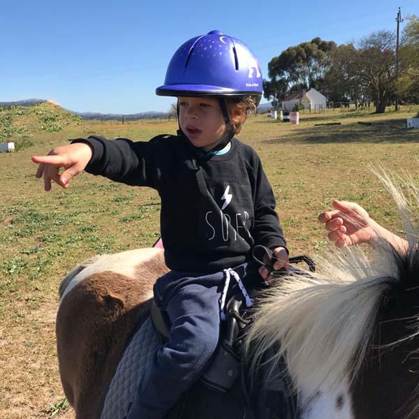 horseback-pointing-membership-support.jpg