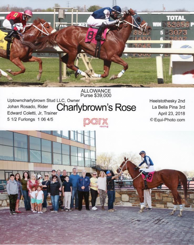 Charlybrown's Rose Apr 23.jpg