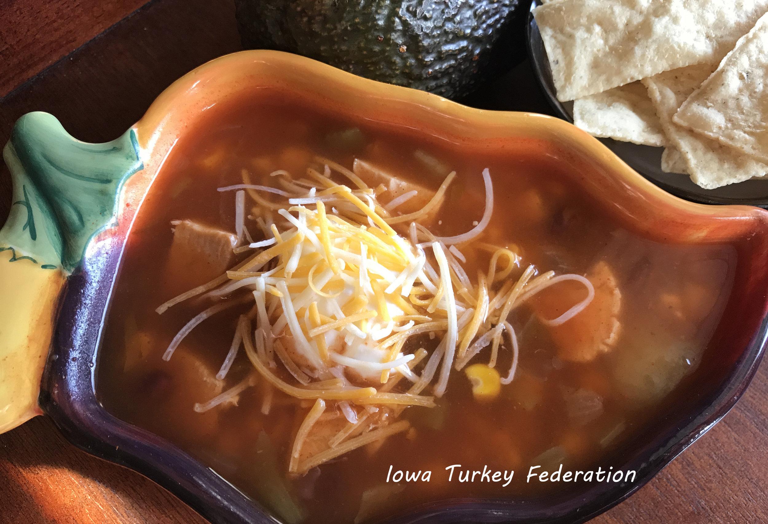 Turkey Enchilada Soup.jpg