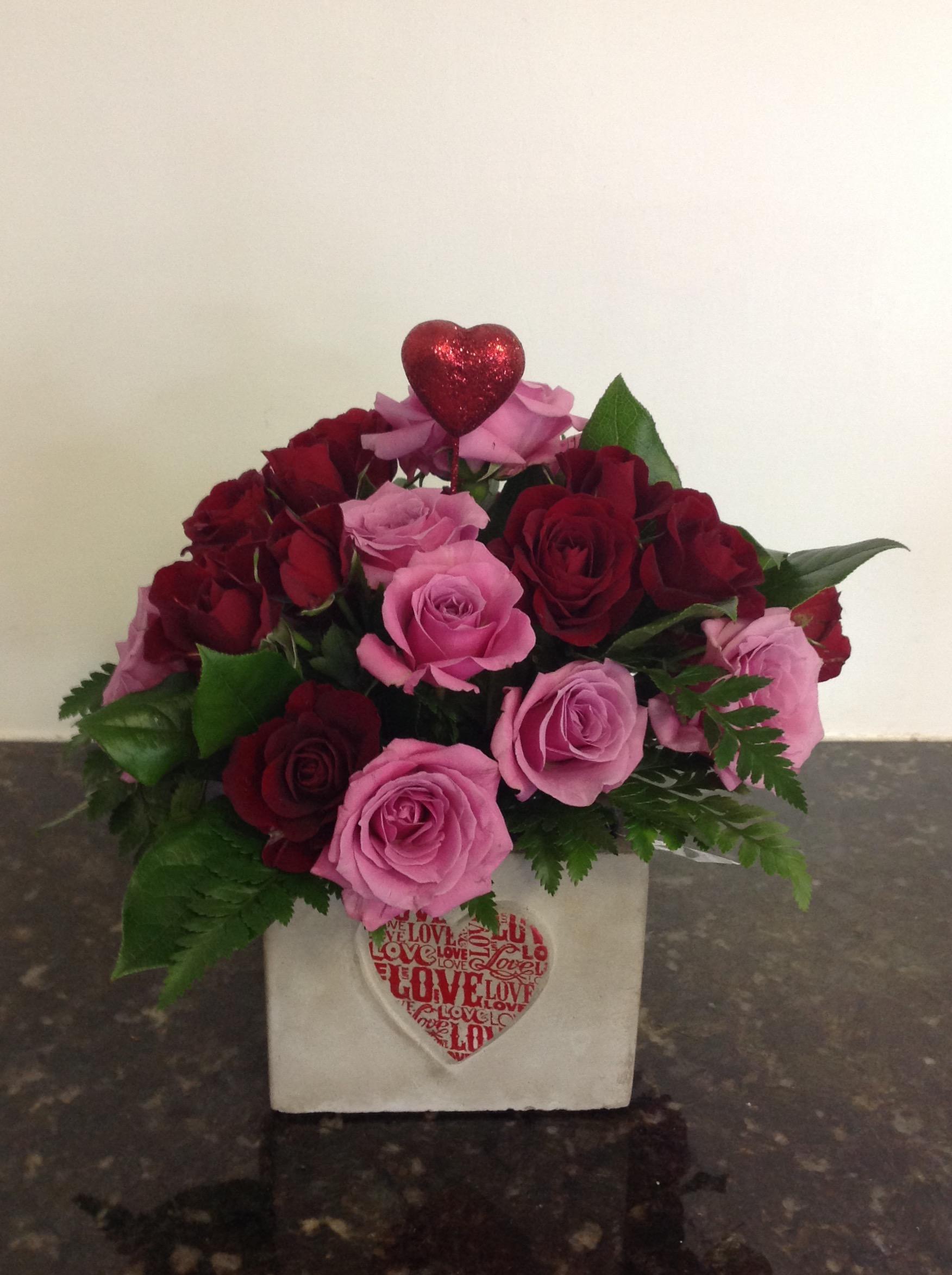 Sweetheart Spray Roses - $50 -