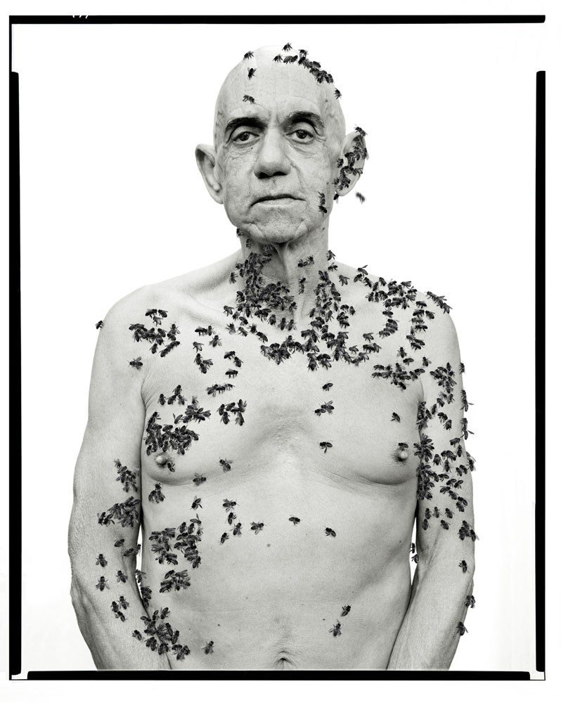 Copy of « LOOKING FOR THE MASTERS IN RICARDO'S GOLDEN SHOES #71 (TRIBUTE TO RICHARD AVEDON, RONALD FISHER, BEEKEEPER, DAVIS, CALIFORNIA, MAY 9, 1981) » BY CATHERINE BALET