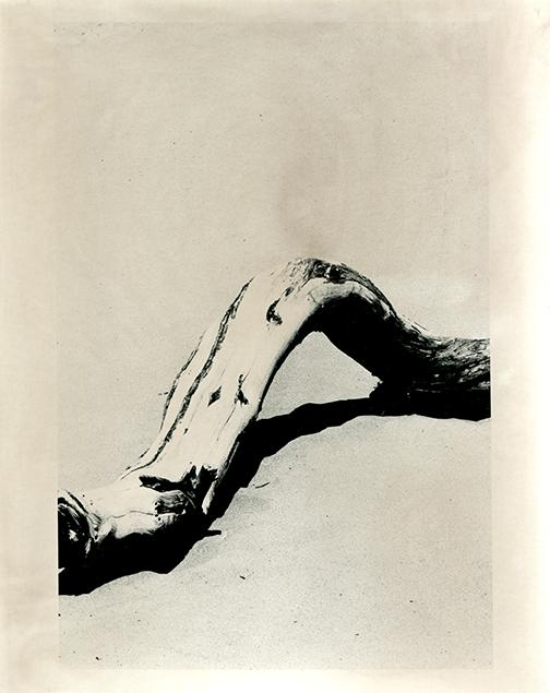 Copy of Confine #91 by Vittoria Gerardi