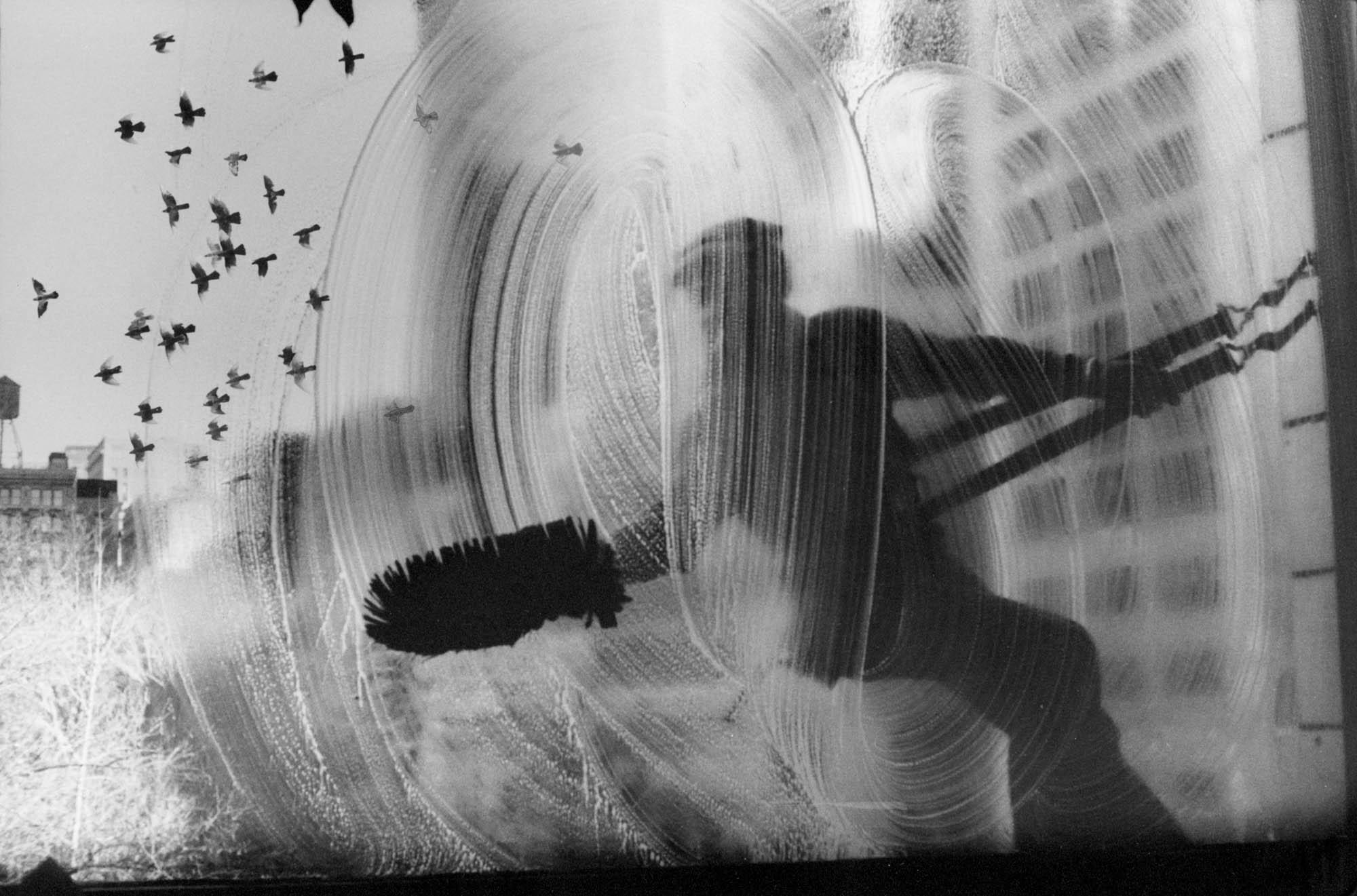 Copy of Window Washer (New York), 1974