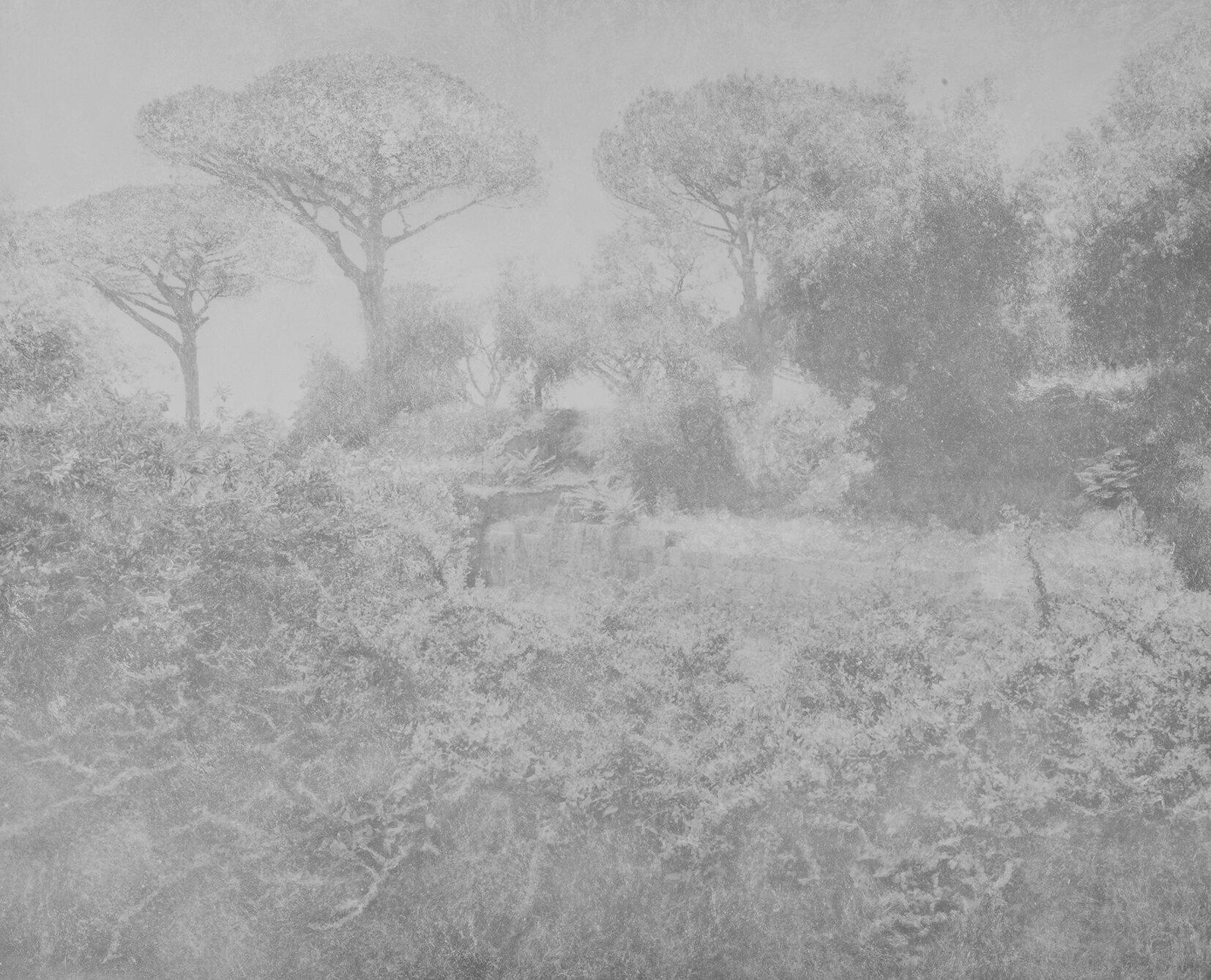 Pompeii_ForumBoarium_courtesyGalerieThierryBigaignon.jpg