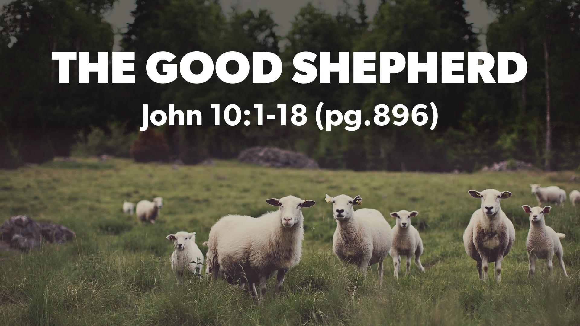 The Good Shepherd   Jerry Lingenfelter.001.jpeg