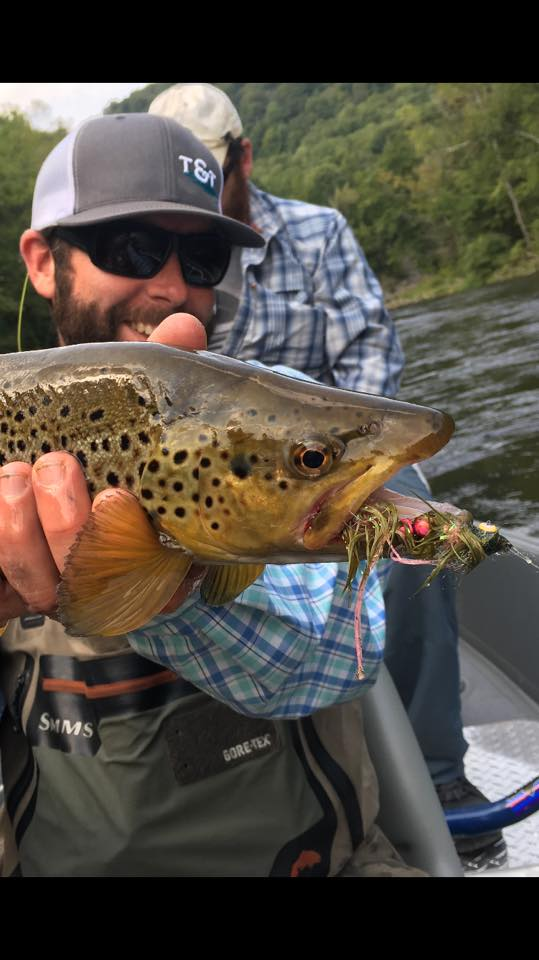 pheasant-tail-tours-trout-guide-brown-trout-deerfield-streamer.jpg