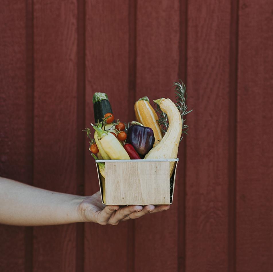 Redhouse-Beef_Garden-Box_2.jpg