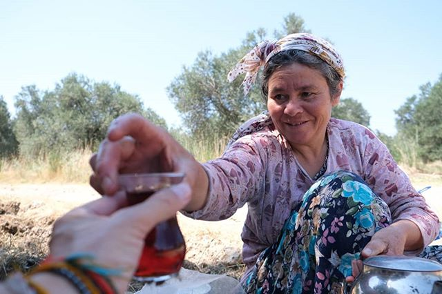 Countless teas Meeting with the locals is always the most enjoyable part of this trip. Today we had lunch with this lovely lady working in olive tree fields. We shared our cherries and apricots and we were offered some tea, homemade bread and cheese and a good amount good feelings.  #mapsandwheels #aworldworthcycling #turkey  #homeiswhereyoutakeit #adventure #biketravel #biketouring #cycletouring #worldbybike #fromwhereiride #storiesfromtheroad #whyiride #cycling #neverstopexploring #slowtravel #biketour #bicycletrip #bikewander #cyclinglife #adventurecycling #staywild #getoutstayout #wanderlust #adventureiswaiting #adventureiswaiting #inspiredtravels #cycletheworld #voyageuravelo #adventurecycling #getoutside
