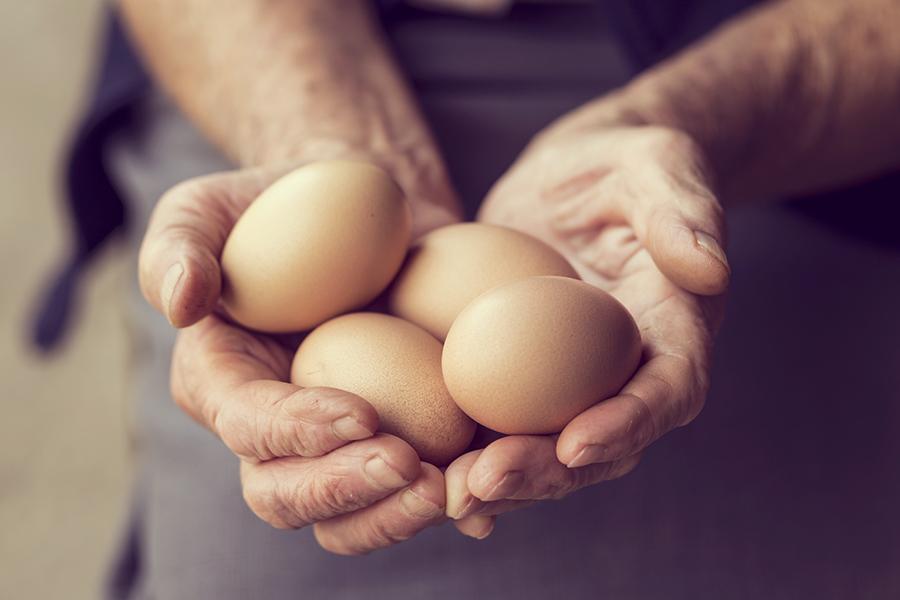 Dairy eggs 6x4.jpg