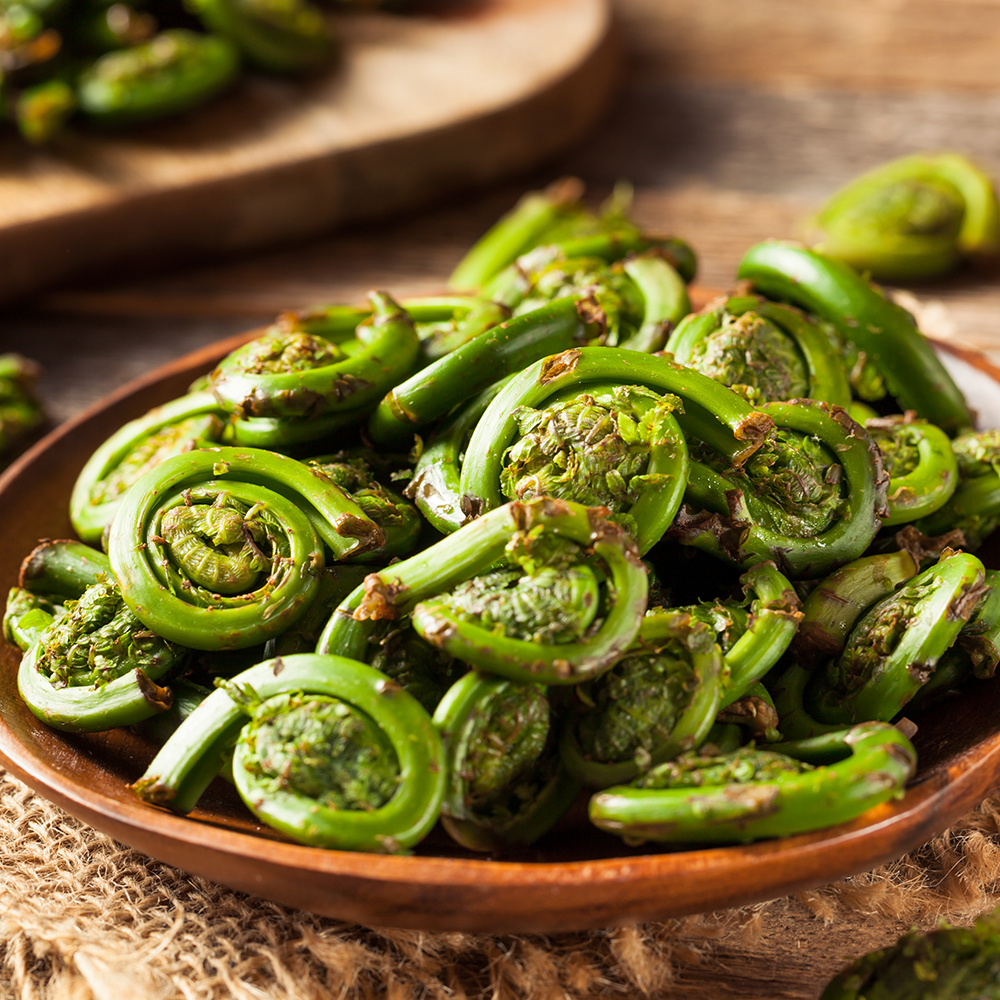 Fiddleheads-1000.jpg