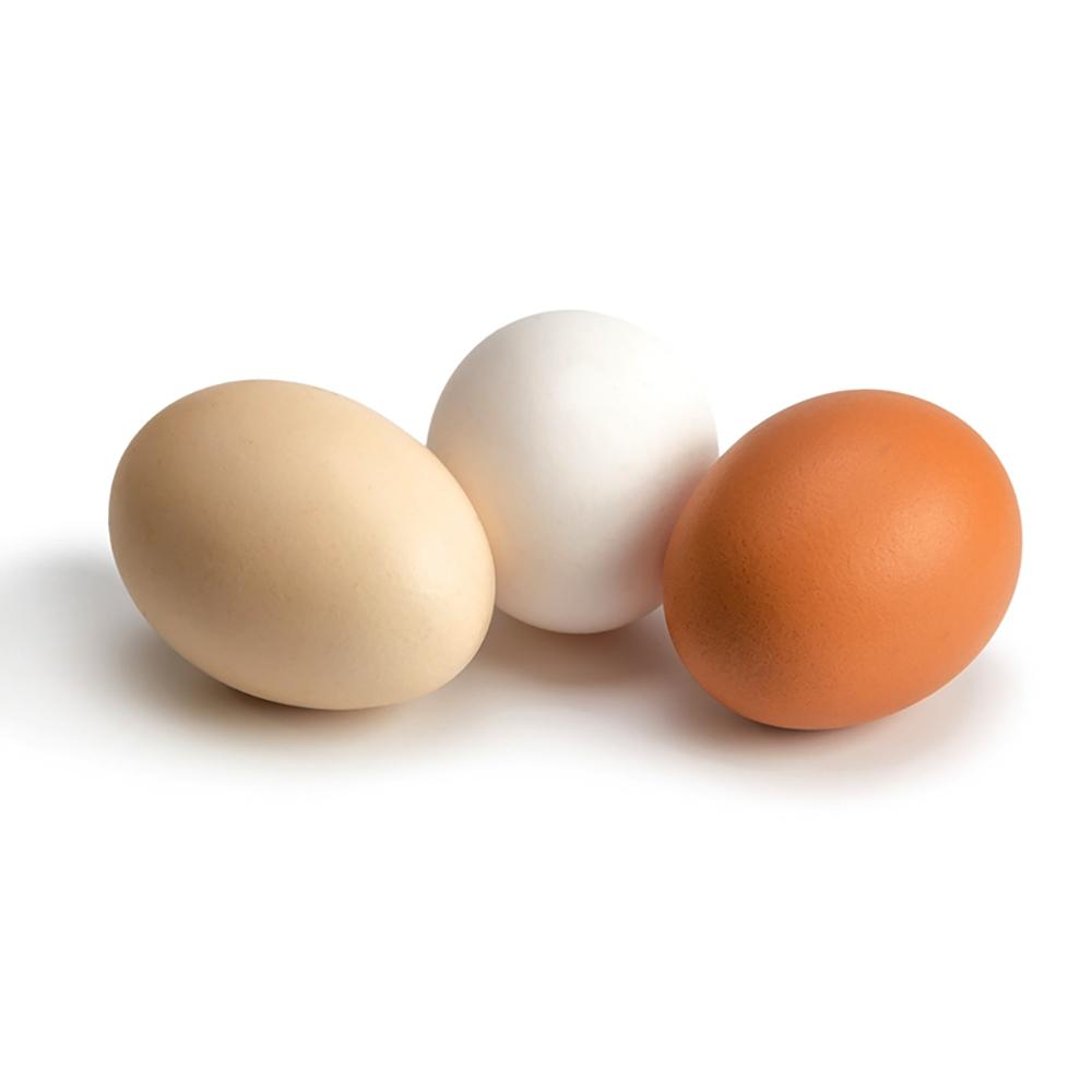 Eggs-1000.jpg
