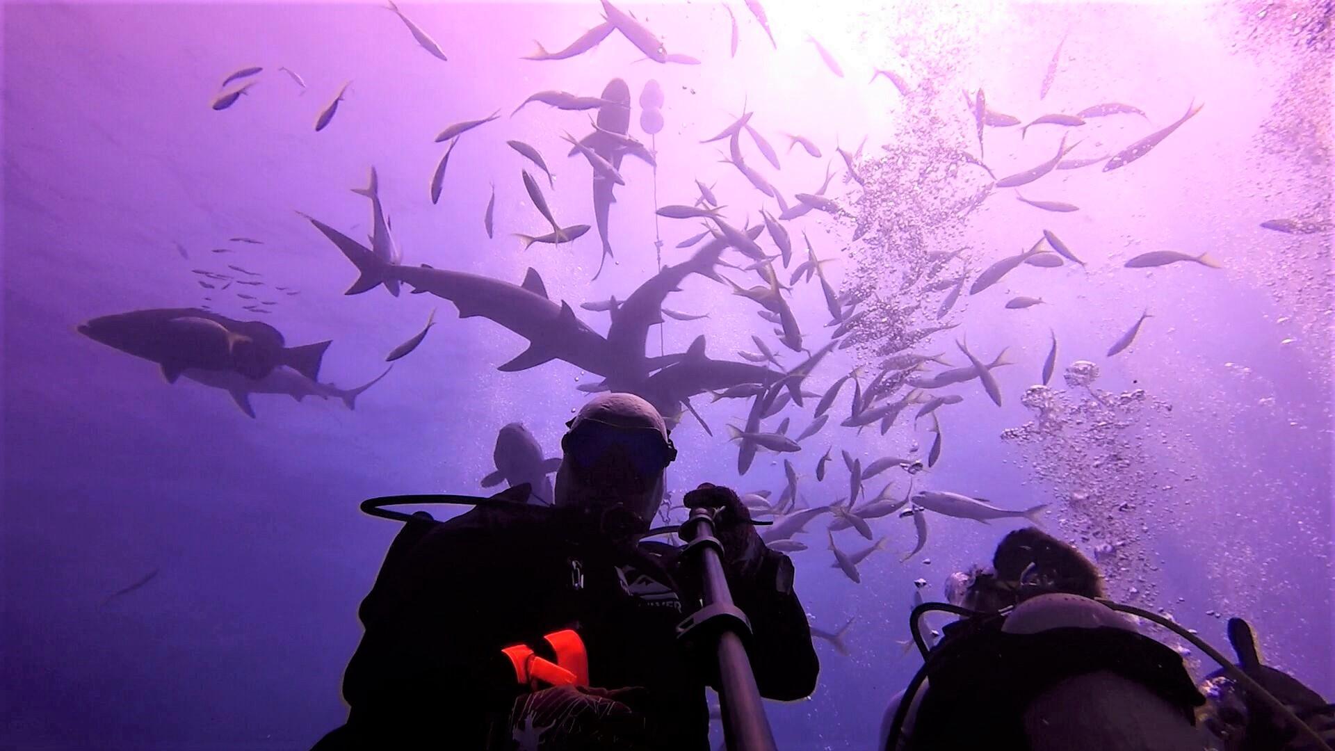Underwater selfie.jpg