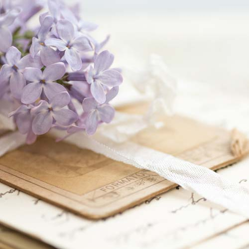 Preserve old letters, greeting cards, newspaper clippings, scrapbooks, journals, and more