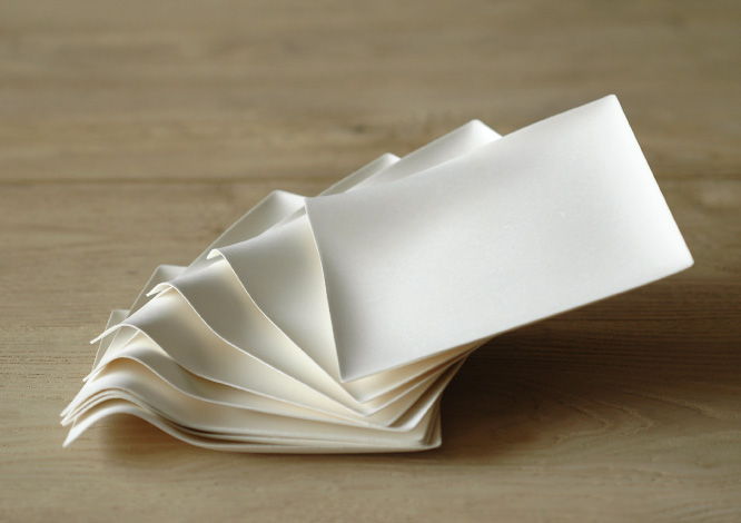 Sustainable Lifestyle Consultant - Wasara Sustainable Disposable Tableware.jpg