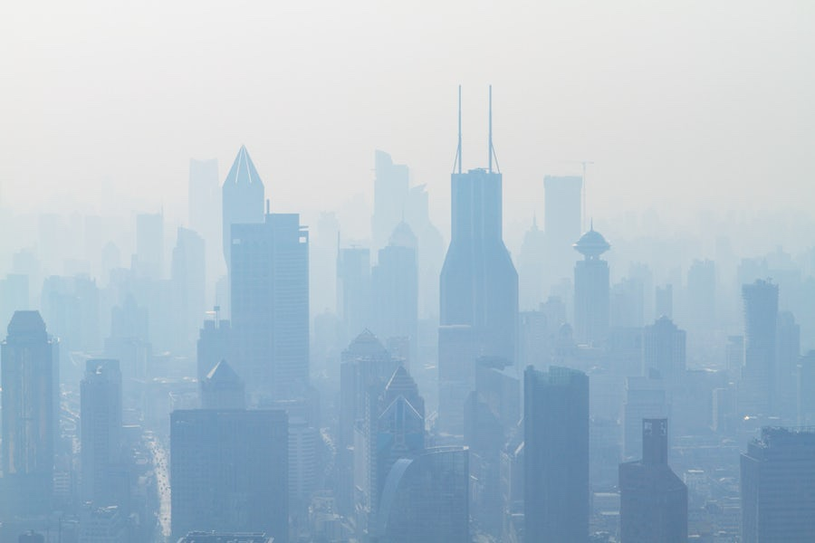 Sustainable+Lifestyle+Consultant+-+Air+pollution+by+Holger+Link.jpg