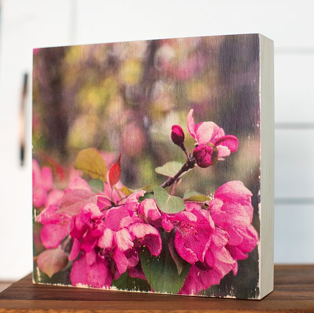 """For all you last-minute holiday shoppers, here's the last of the 8""""x8"""" art blocks!! $55 each- DM me ☺️ • • #shoplocal #christmasgifts #madera #makersgonnamake #peony #springblossoms #photoart #woodart #woodtransfer #maderameanswood #maderabymakifotos #transferredbyhand #handmade"""