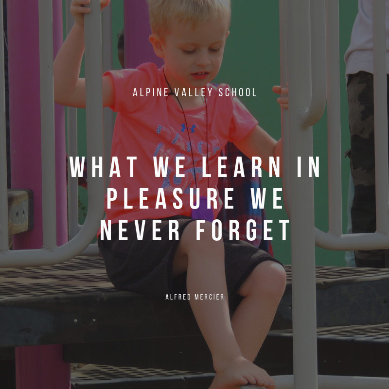 what we learn in pleasure we never forget.png