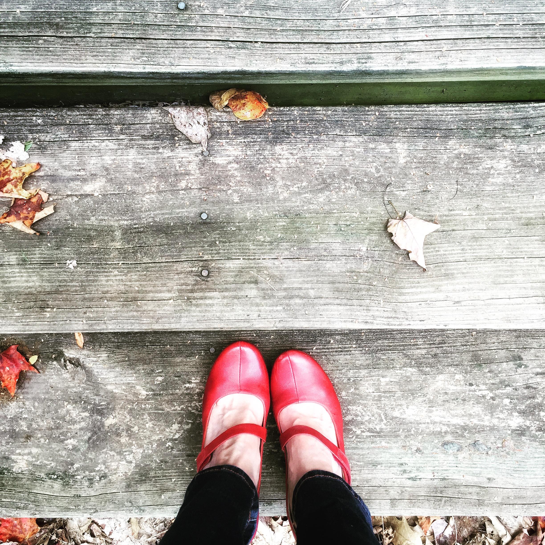 front steps_IMG_4577.JPG
