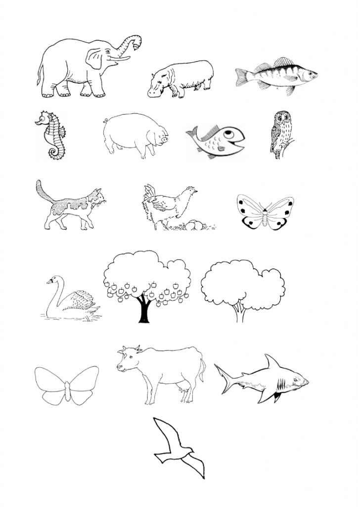 9God-made-many-animals-lessonEng-_006-724x1024.png
