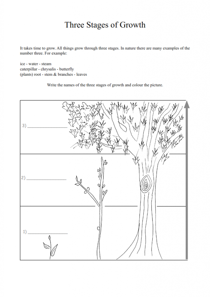 14.-How-We-Grow-lessonEng_006-724x1024.png