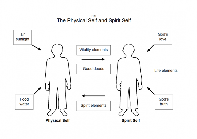 14.-The-Physical-Self-Spirit-Self-lessonEng_012-1-565x800.png