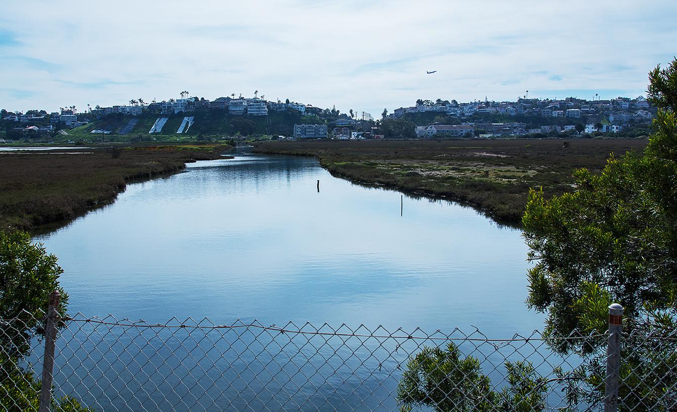 Saltwater Marsh as seen from Ballona Creek