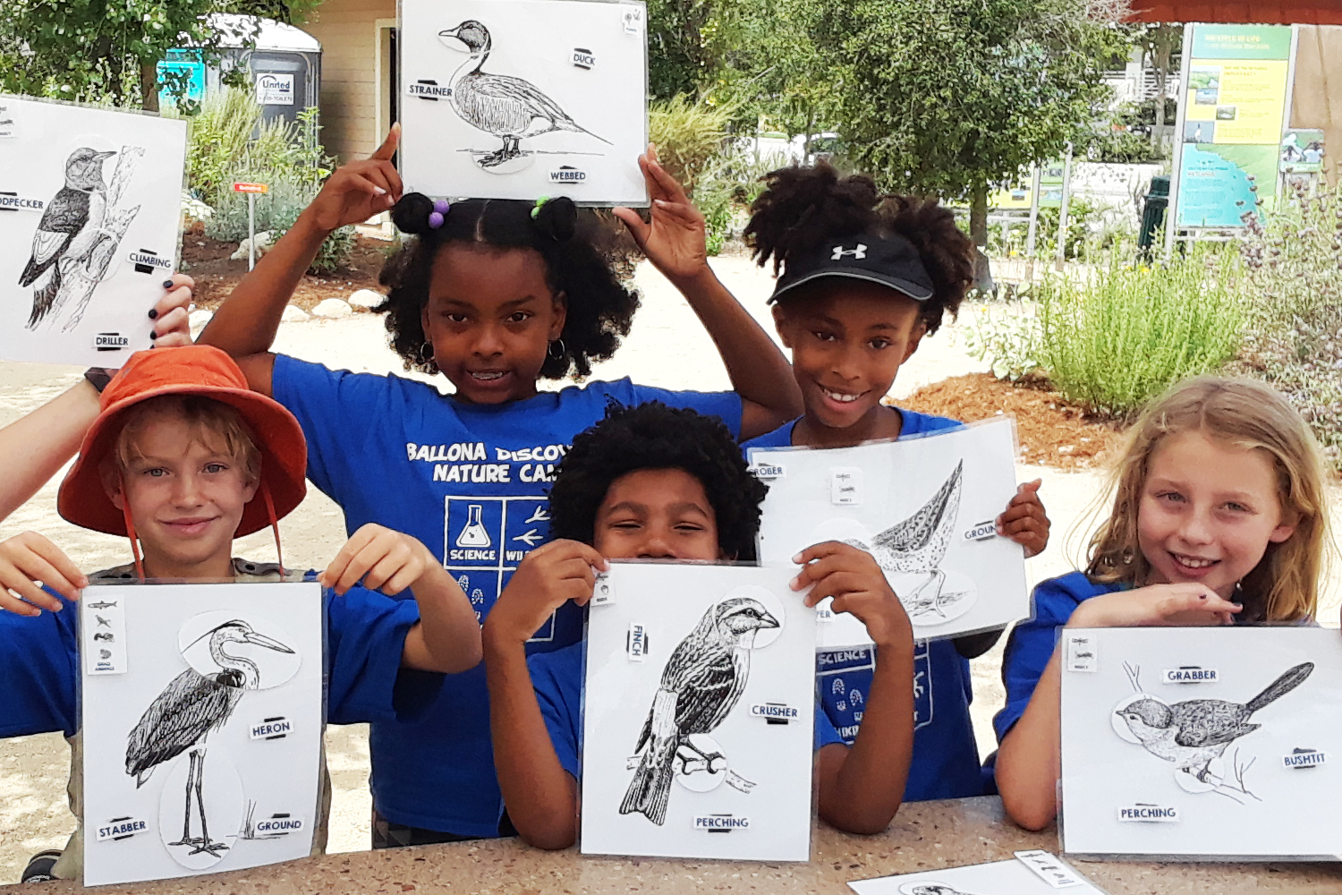 Campers with Bird Illustrations