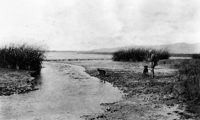 Duck hunting in Ballona Creek, circa 1890