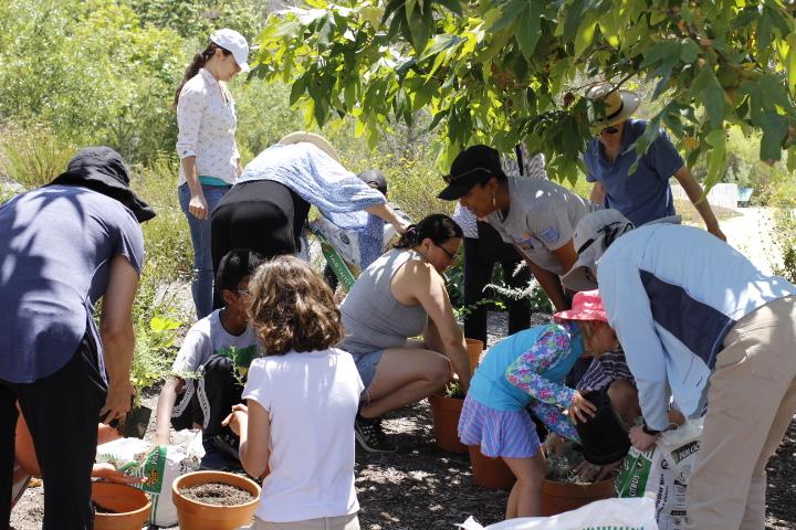 Grow Native Workshop attendees potting native plants