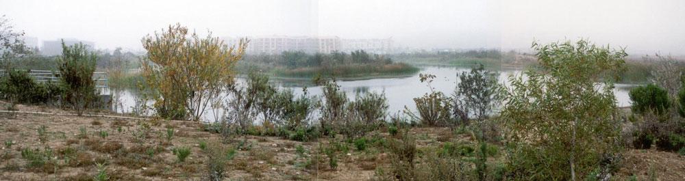 Marsh opens, 2003.