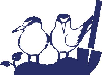 restoration-terns.png