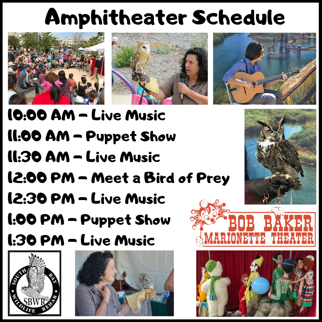 Amphitheater Schedule (1).png