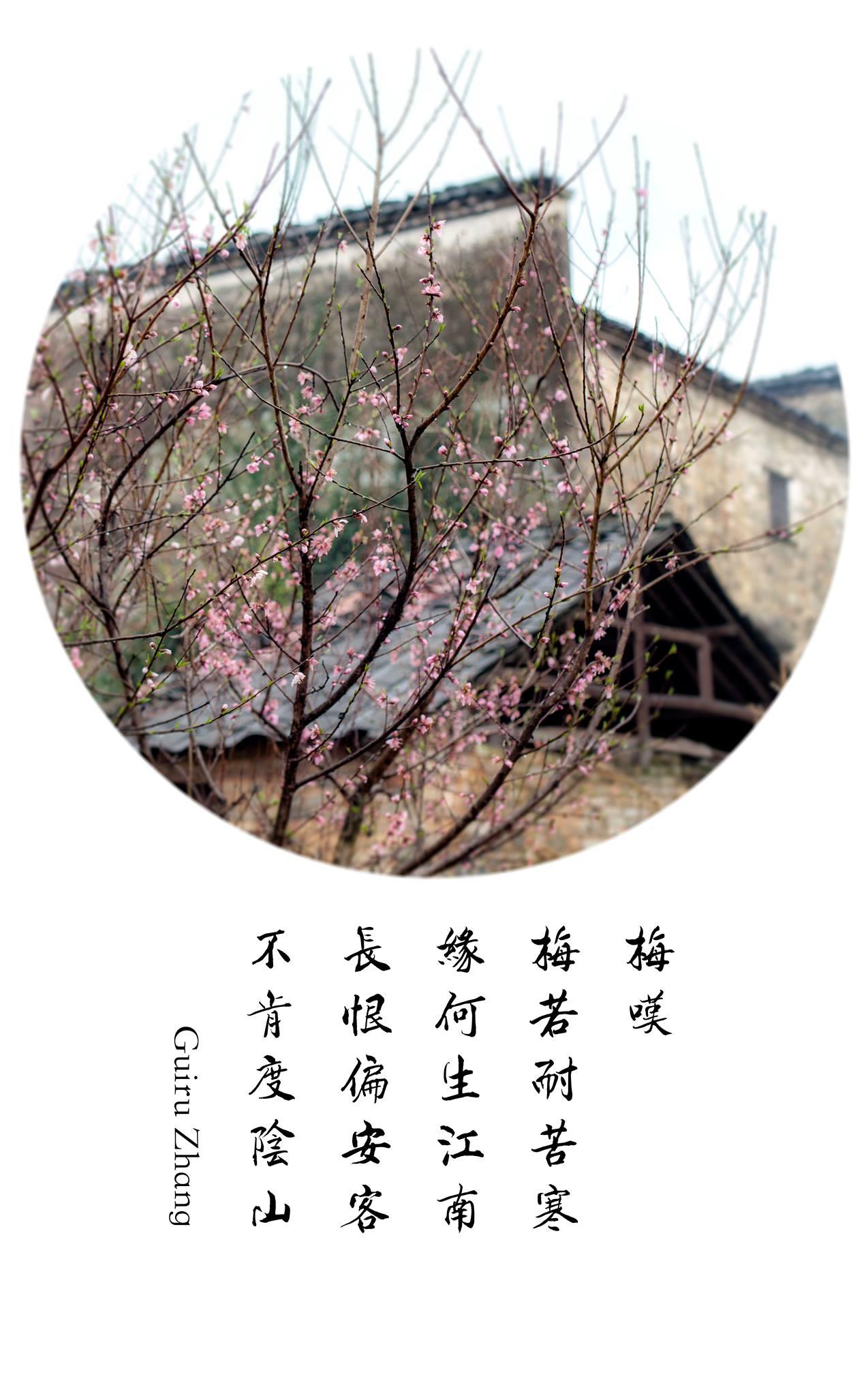Photo by Benny Zhang Studio.