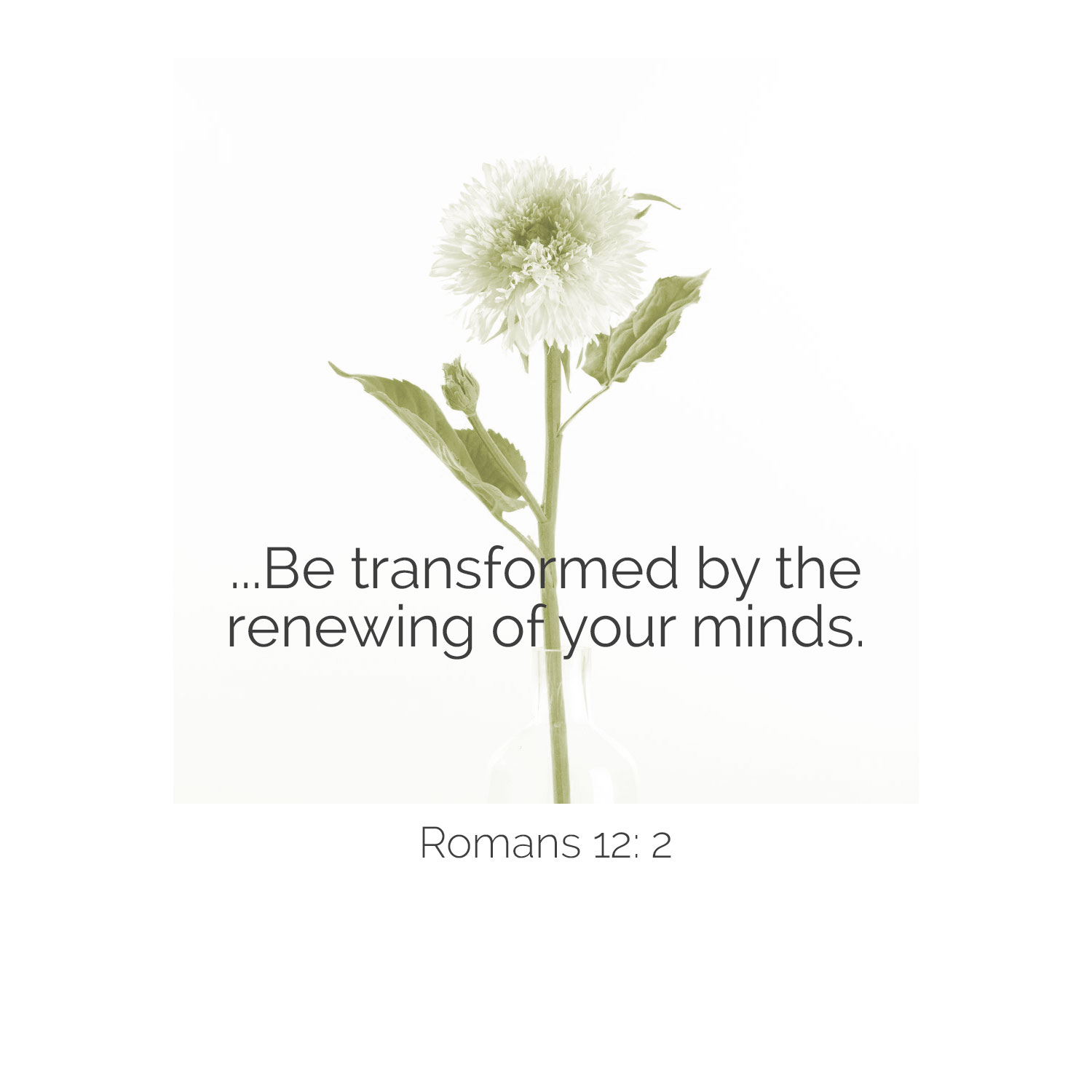 quote-be-transformed-by-v3.jpg