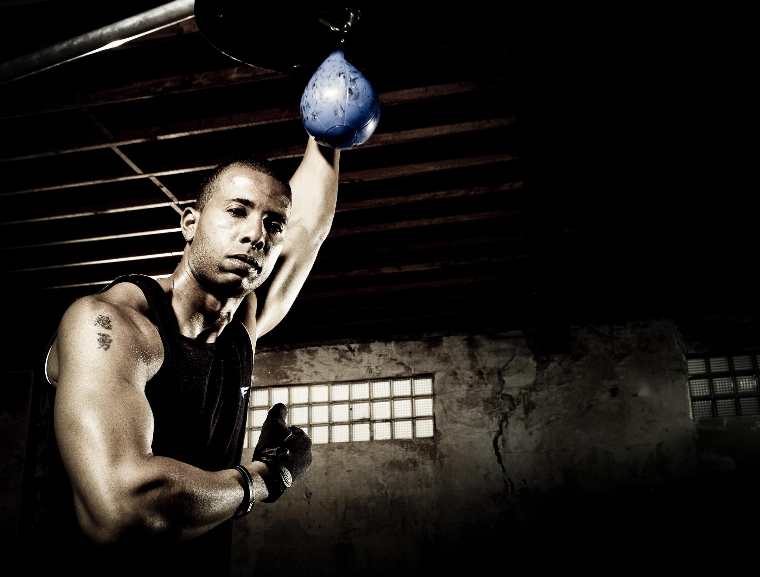 boxer_33.jpg