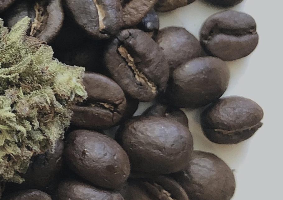BUDDHA BEAN COFFEE